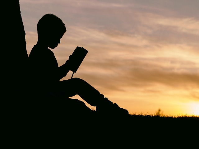 A silhouette of a young child leaning against a tree reading a book
